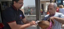 Campanha de vacinação antirrábica continua