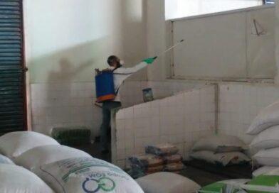 Mercados de peixe e farinha são dedetizados para combater insetos rasteiros