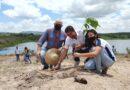 Cupira lança projeto para reflorestar áreas rurais e urbanas do município